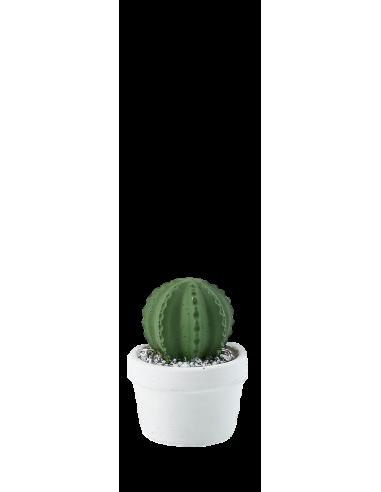 Cactus mini in cemento - Verde scuro